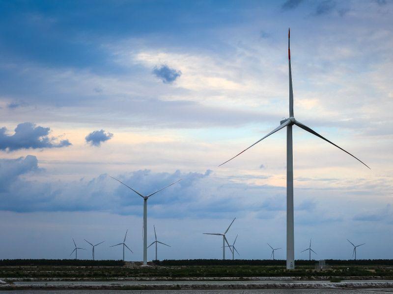 AMLO anuncia plan energético, pero olvida energías renovables