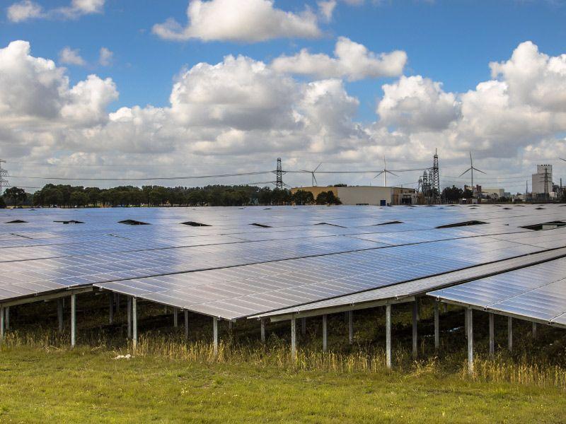 La CFE retira su amparo contra las empresas fotovoltaicas